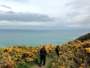 The folks hiking on the Ceredigion coastal path