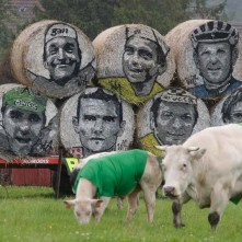 Cows, draped in the colours of the Tour de France cycling leaders jerseys, graze in a field near rolls of hay with the portraits of former cyclists along the route of the fifth stage of the Tour de France cycling race between Belgium and France...Cows, draped in the colours of the Tour de France cycling leaders jerseys, graze in a field near rolls of hay with the portraits of former champions along the route of the fifth stage of the Tour de France cycling race from Ypres in Belgium to Arenberg Porte du Hainaut in France, July 9, 2014. REUTERS/Jacky Naegelen (FRANCE - Tags: SPORT CYCLING ANIMALS)