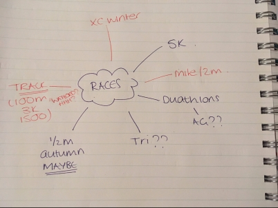 Race planning goals